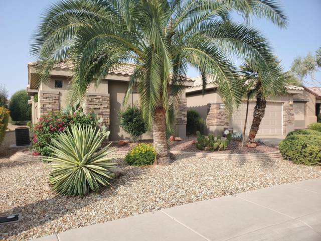 15829 W Bridgewater Way, Surprise, AZ 85374 (MLS #6133723) :: Arizona Home Group