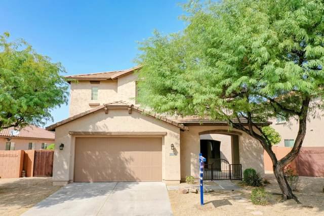 9036 W Buckhorn Trail, Peoria, AZ 85383 (MLS #6133943) :: Conway Real Estate