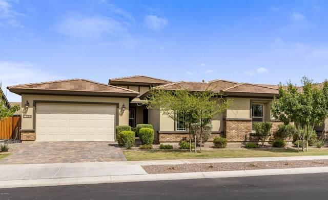 7154 E Peralta Circle, Mesa, AZ 85212 (MLS #6134126) :: D & R Realty LLC