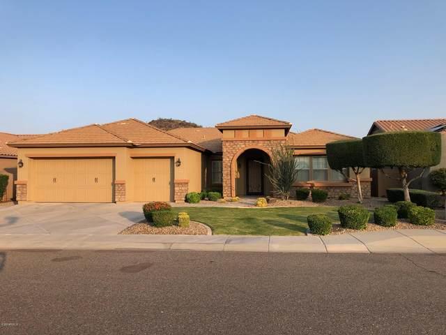 26614 N 57TH Avenue, Phoenix, AZ 85083 (MLS #6134444) :: REMAX Professionals