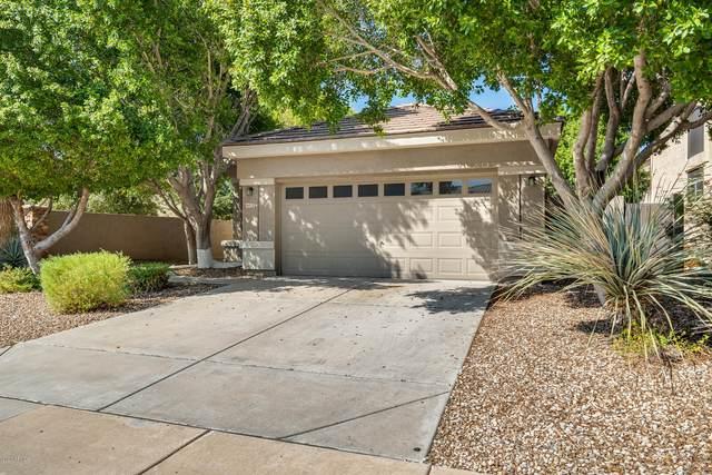 6872 W Irma Lane, Glendale, AZ 85308 (MLS #6134555) :: Yost Realty Group at RE/MAX Casa Grande