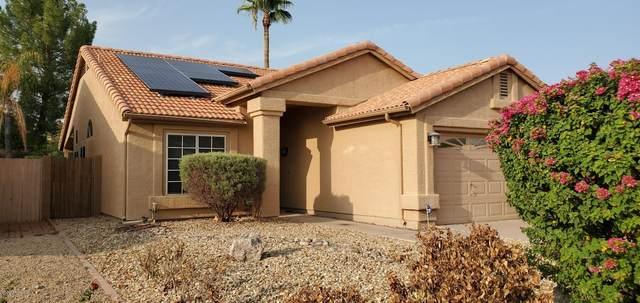 4122 W Camino Vivaz Drive, Glendale, AZ 85310 (MLS #6134569) :: Selling AZ Homes Team