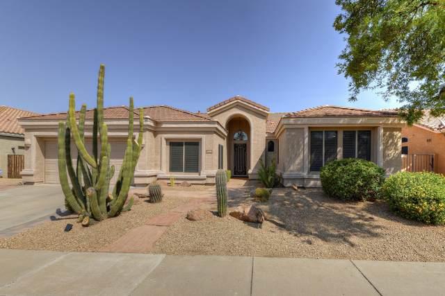 4308 E Swilling Road, Phoenix, AZ 85050 (MLS #6135021) :: My Home Group