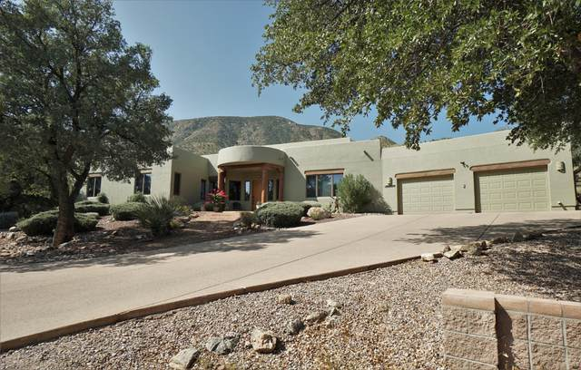 10356 S Thicket Place, Hereford, AZ 85615 (MLS #6135609) :: Lucido Agency