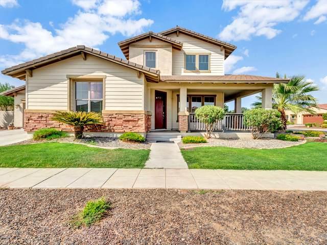 15352 W Aster Drive, Surprise, AZ 85379 (MLS #6135705) :: Klaus Team Real Estate Solutions
