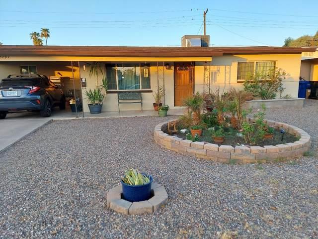 2297 E Alpine Avenue, Mesa, AZ 85204 (MLS #6135708) :: Brett Tanner Home Selling Team