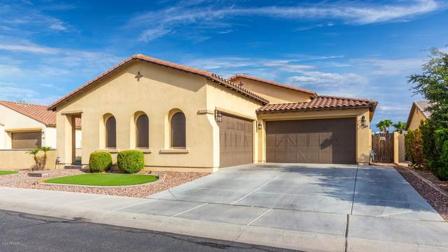 16164 W Holly Street, Goodyear, AZ 85395 (MLS #6135828) :: My Home Group