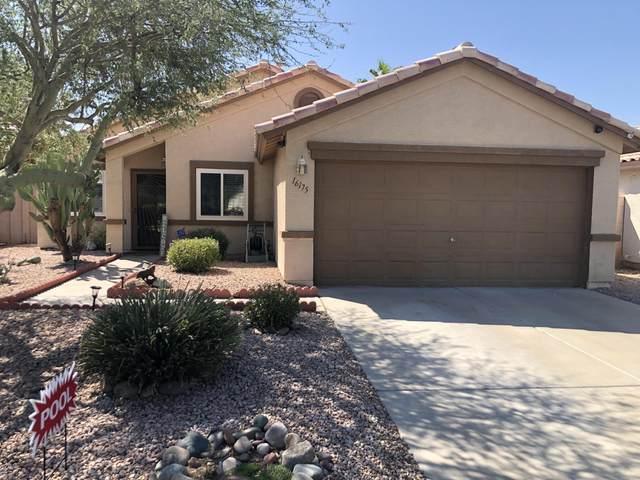 16175 W Tonto Street, Goodyear, AZ 85338 (MLS #6137117) :: Balboa Realty