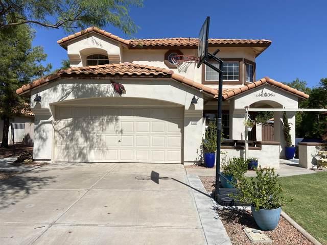 1658 W Gunstock Loop, Chandler, AZ 85286 (MLS #6137137) :: The Property Partners at eXp Realty