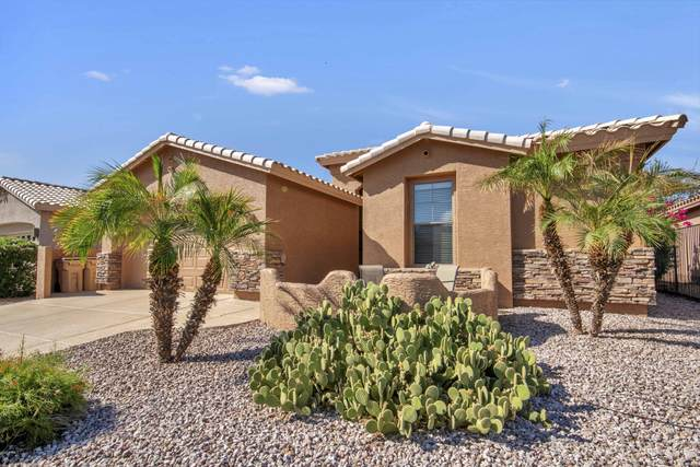25012 S Golfview Drive, Sun Lakes, AZ 85248 (MLS #6137278) :: Scott Gaertner Group