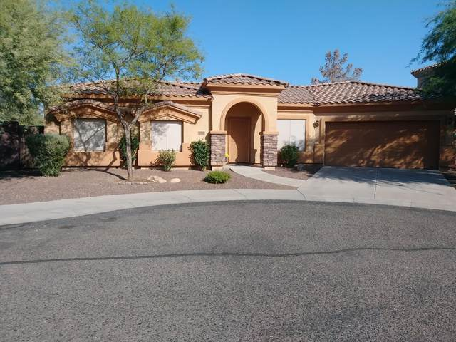 17317 N 19TH Terrace, Phoenix, AZ 85022 (MLS #6137301) :: Brett Tanner Home Selling Team
