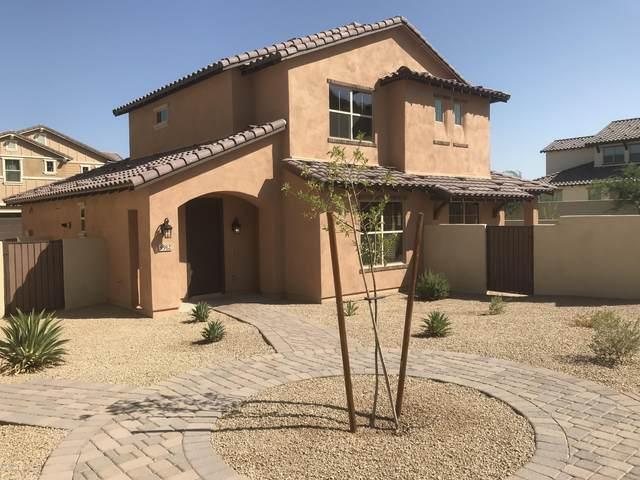 9912 S 3RD Avenue, Phoenix, AZ 85041 (MLS #6137836) :: neXGen Real Estate