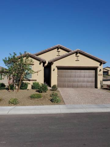 4274 Sawbuck Way, Wickenburg, AZ 85390 (MLS #6138030) :: Brett Tanner Home Selling Team