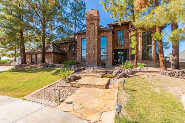 2450 N Forest Cir Circle, Mesa, AZ 85203 (MLS #6138183) :: Sheli Stoddart Team | M.A.Z. Realty Professionals