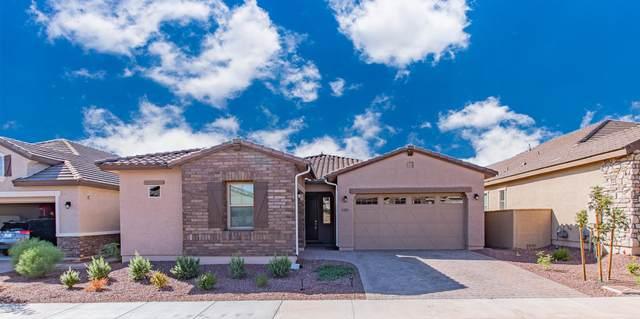 19883 W Glenrosa Avenue, Litchfield Park, AZ 85340 (MLS #6139246) :: The Garcia Group