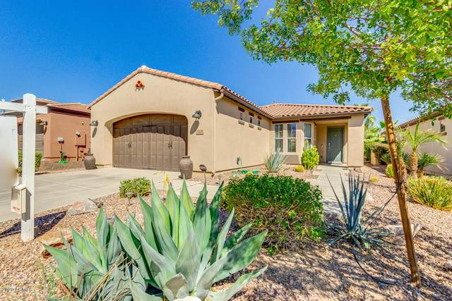 1406 E Sweet Citrus Drive, Queen Creek, AZ 85140 (MLS #6139599) :: BVO Luxury Group