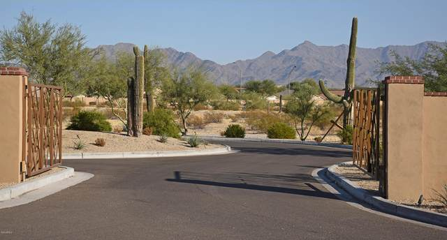 17919 W Sunward Drive, Goodyear, AZ 85338 (MLS #6140250) :: Brett Tanner Home Selling Team