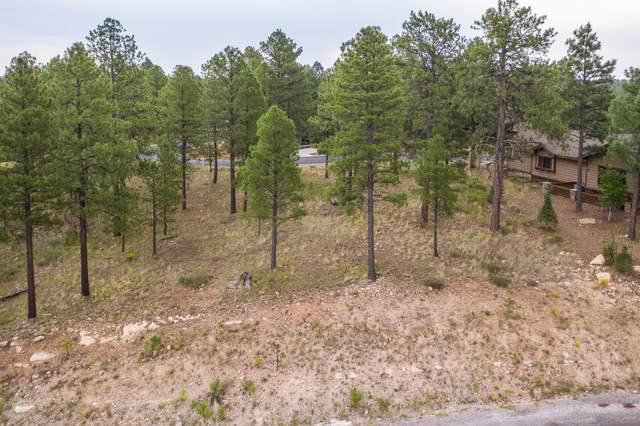 3235 S Tehama Circle, Flagstaff, AZ 86005 (MLS #6140941) :: Sheli Stoddart Team | M.A.Z. Realty Professionals