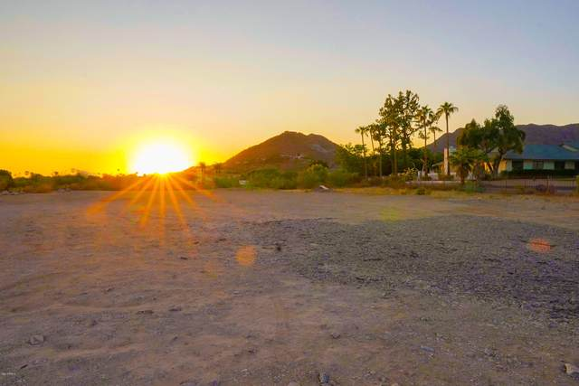 6720 N Joshua Tree Lane, Paradise Valley, AZ 85253 (MLS #6141211) :: Long Realty West Valley