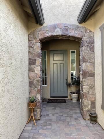 10537 E Meseto Avenue, Mesa, AZ 85209 (MLS #6142301) :: Arizona Home Group