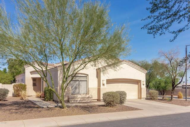2232 E Branham Lane, Phoenix, AZ 85042 (MLS #6142779) :: NextView Home Professionals, Brokered by eXp Realty