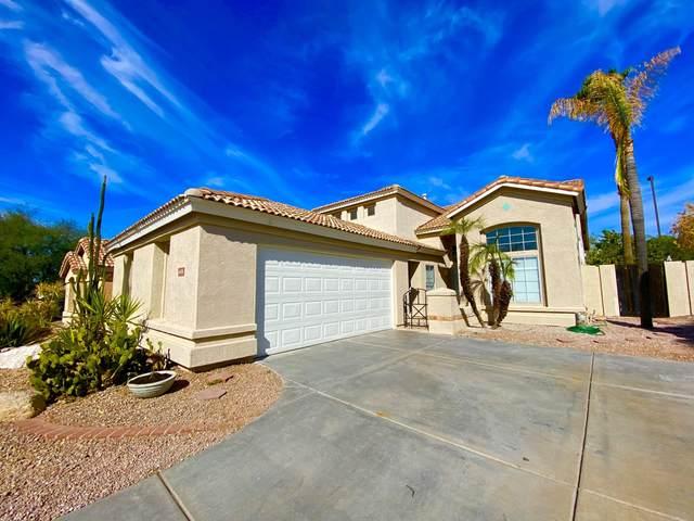 6038 E Sayan Circle, Mesa, AZ 85215 (MLS #6143085) :: Devor Real Estate Associates
