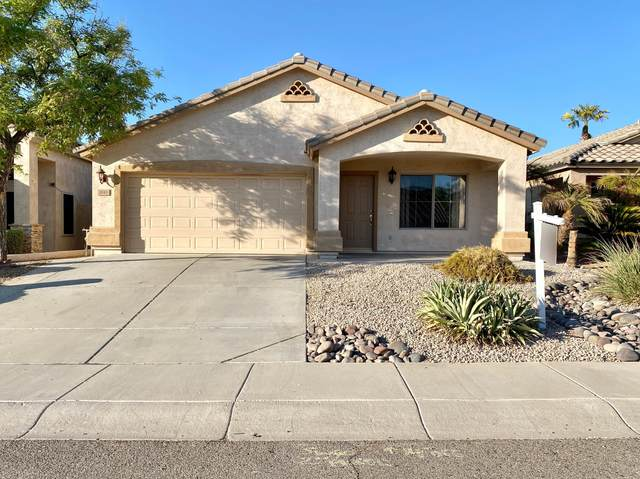 1810 W Muirwood Drive, Phoenix, AZ 85045 (MLS #6143745) :: The Daniel Montez Real Estate Group