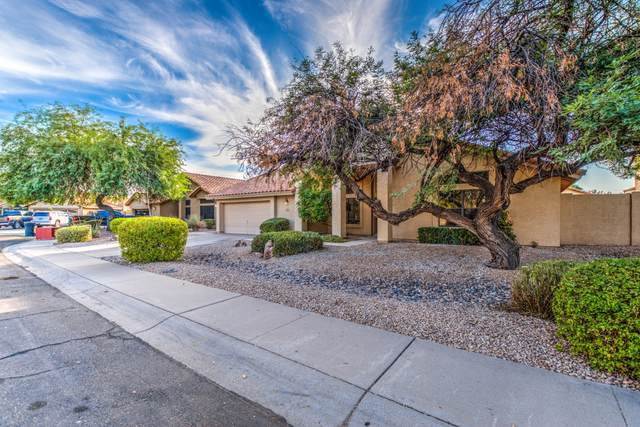 9010 S Ash Avenue, Tempe, AZ 85284 (MLS #6144119) :: Homehelper Consultants