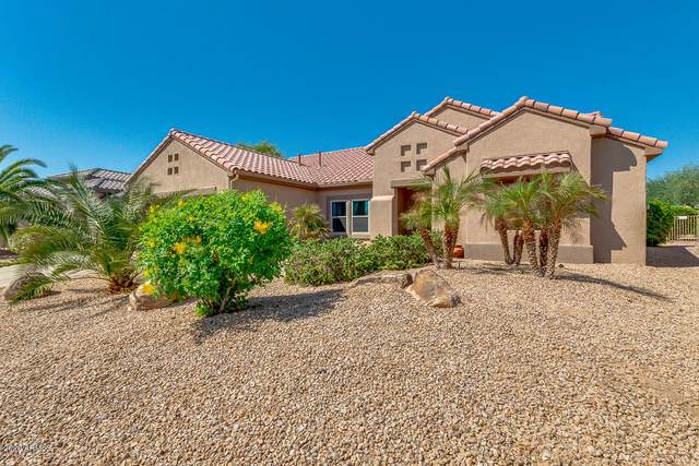 17932 N Bridle Lane, Surprise, AZ 85374 (MLS #6144377) :: neXGen Real Estate