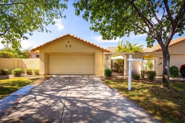 8956 S Drea Lane, Tempe, AZ 85284 (MLS #6145576) :: Klaus Team Real Estate Solutions
