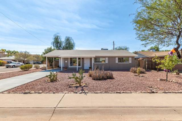1301 W 7TH Street, Tempe, AZ 85281 (MLS #6145583) :: Sheli Stoddart Team | M.A.Z. Realty Professionals