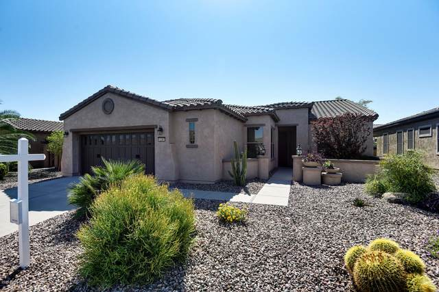 12387 W Alyssa Lane, Peoria, AZ 85383 (MLS #6145751) :: Long Realty West Valley
