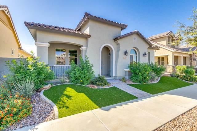 4445 E Skousen Street, Gilbert, AZ 85295 (MLS #6146395) :: Lifestyle Partners Team