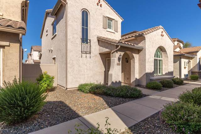 5332 W Molly Lane, Phoenix, AZ 85083 (MLS #6146452) :: Dave Fernandez Team | HomeSmart