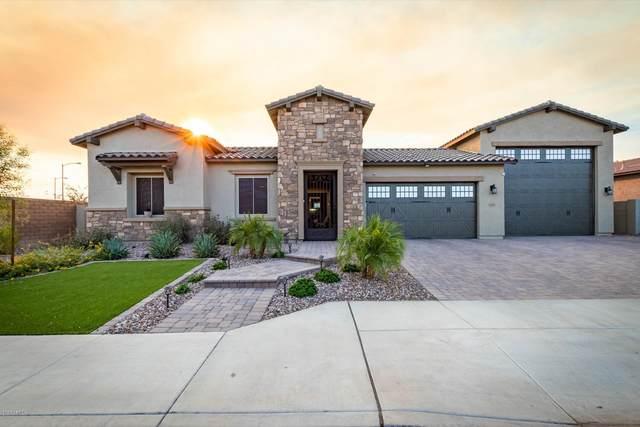 23186 N 94TH Lane, Peoria, AZ 85383 (MLS #6146547) :: Sheli Stoddart Team | M.A.Z. Realty Professionals