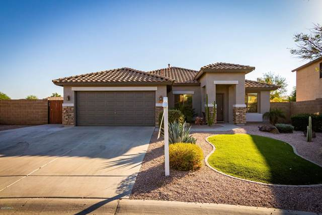 631 W Corriente Court, San Tan Valley, AZ 85143 (MLS #6146678) :: Lifestyle Partners Team