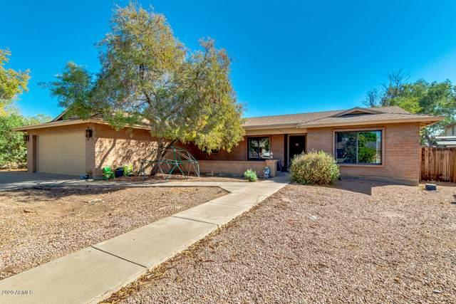 2435 E Kenwood Circle, Mesa, AZ 85213 (MLS #6146932) :: Sheli Stoddart Team | M.A.Z. Realty Professionals