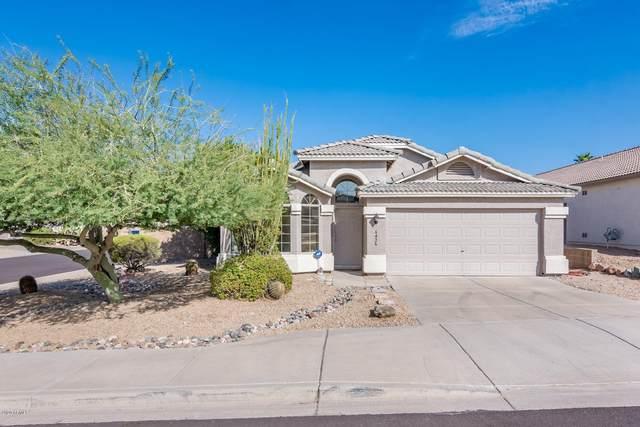 6426 W Prickly Pear Trail, Phoenix, AZ 85083 (MLS #6147643) :: Yost Realty Group at RE/MAX Casa Grande