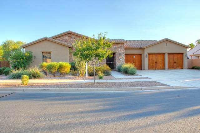 20163 E Via Del Oro, Queen Creek, AZ 85142 (MLS #6147783) :: Power Realty Group Model Home Center