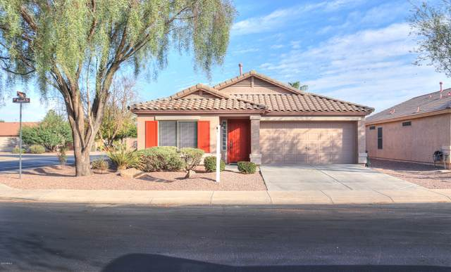 42444 W Michaels Drive, Maricopa, AZ 85138 (MLS #6148200) :: neXGen Real Estate