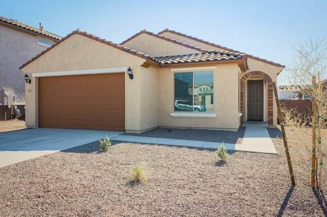 7097 W Jasmine Trail W, Peoria, AZ 85383 (MLS #6148216) :: John Hogen | Realty ONE Group