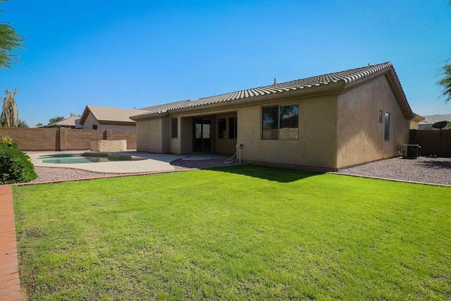 14458 W Lexington Avenue, Goodyear, AZ 85395 (MLS #6148244) :: The Everest Team at eXp Realty