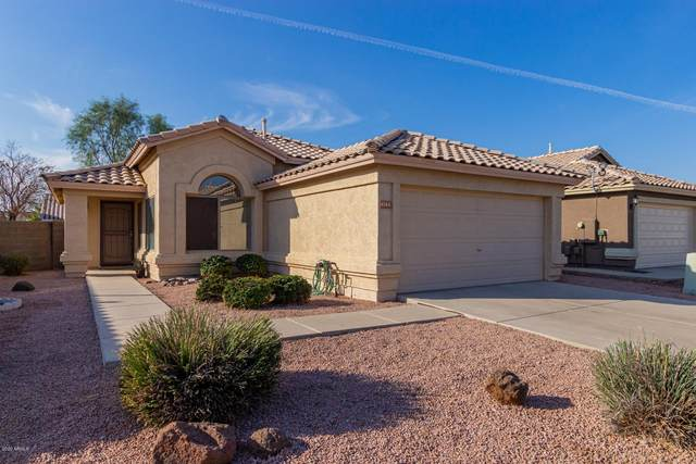 4743 E Summerhaven Drive, Phoenix, AZ 85044 (MLS #6148315) :: Devor Real Estate Associates