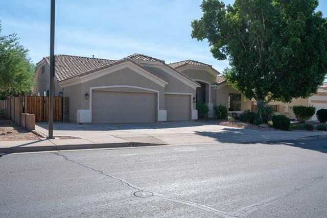 8613 E Hannibal Street, Mesa, AZ 85207 (MLS #6148361) :: The AZ Performance PLUS+ Team