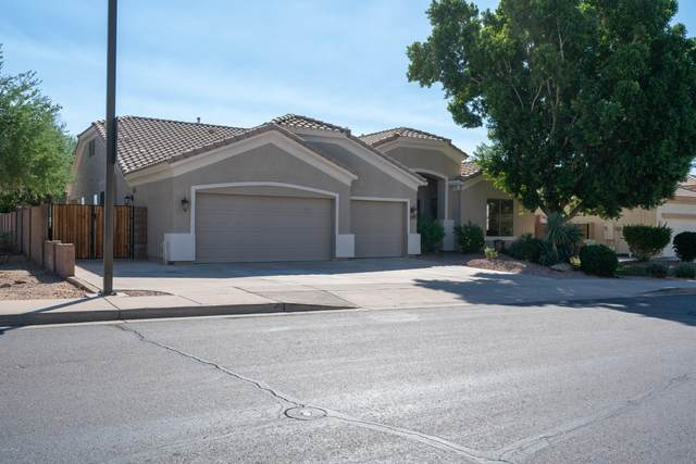 8613 E Hannibal Street, Mesa, AZ 85207 (MLS #6148361) :: The Carin Nguyen Team