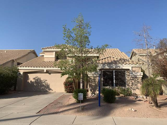 3814 E Tanglewood Drive, Phoenix, AZ 85048 (MLS #6148523) :: The Garcia Group