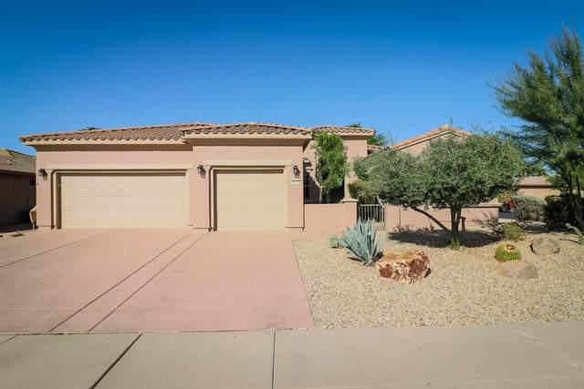 20248 N Sojourner Drive, Surprise, AZ 85387 (MLS #6149186) :: Homehelper Consultants