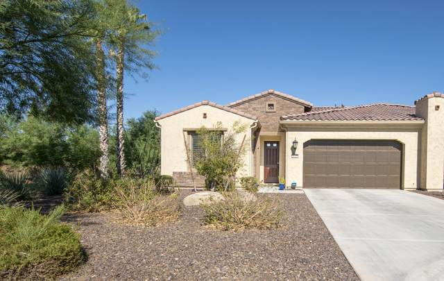 16958 W Holly Street, Goodyear, AZ 85395 (MLS #6149251) :: The J Group Real Estate | eXp Realty