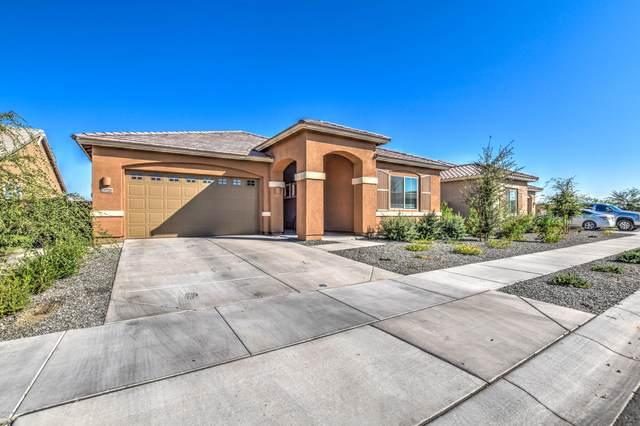 21520 E Waverly Court, Queen Creek, AZ 85142 (MLS #6149405) :: Keller Williams Realty Phoenix