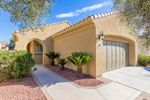 13014 W El Sueno Court, Sun City West, AZ 85375 (MLS #6149703) :: Long Realty West Valley